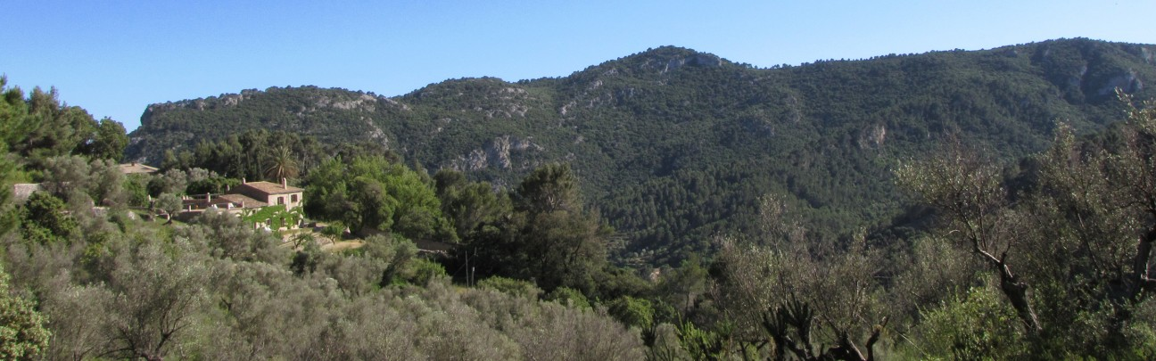 Mirabó de Valldemossa - Mallorca - Spain
