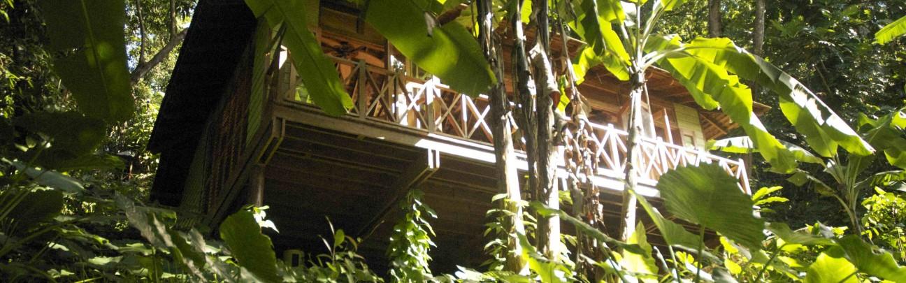 Kanopi House hotel - Jamaica - Jamaica