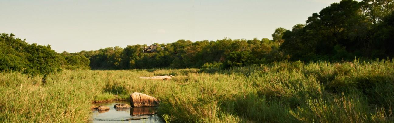 Singita Ebony Lodge - Kruger National Park - South Africa