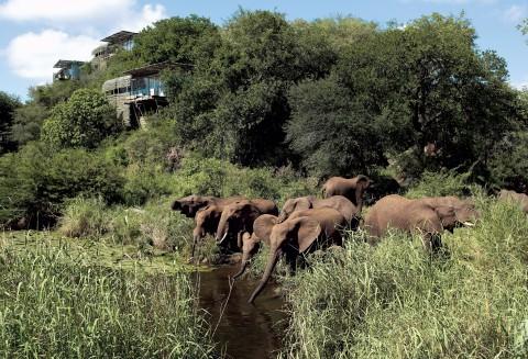 Singita Lebombo Lodge - 7 of 13